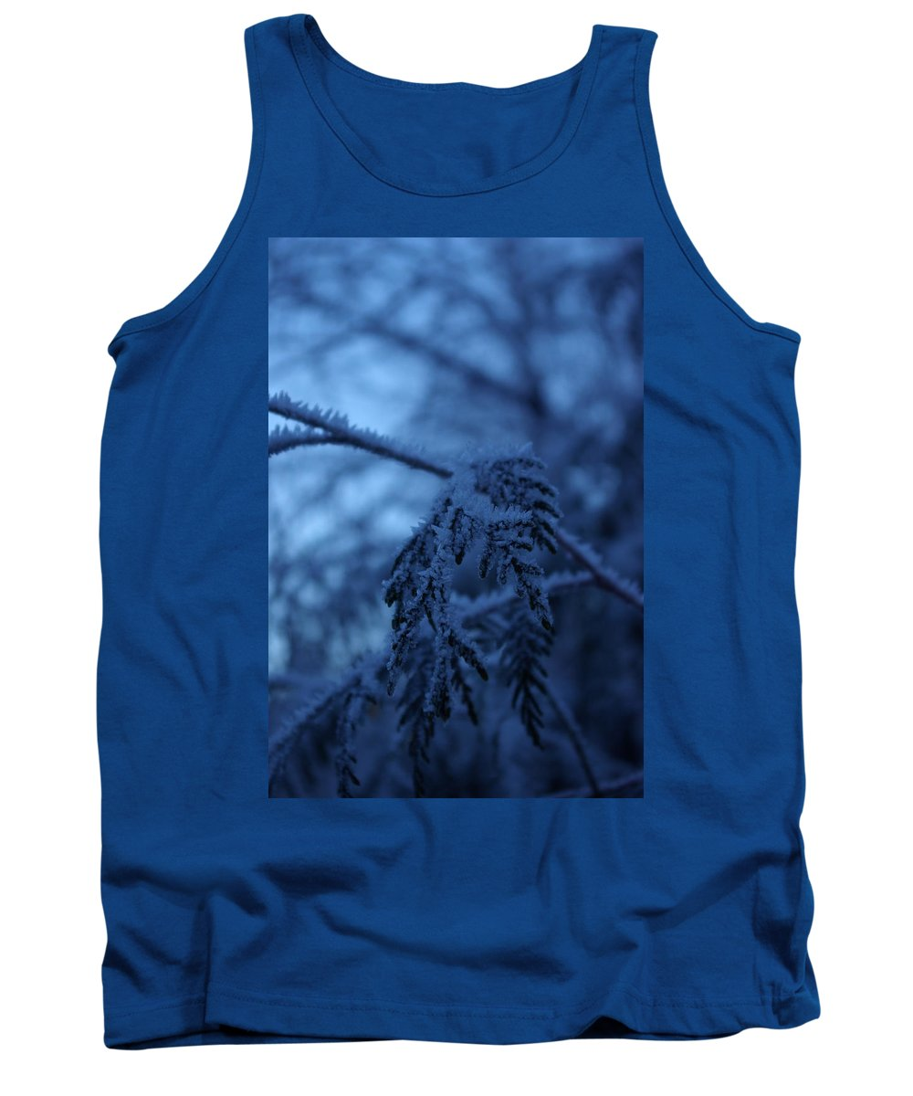 Cedar Tank Top featuring the photograph Cedars Of Ice II by Cindy Johnston