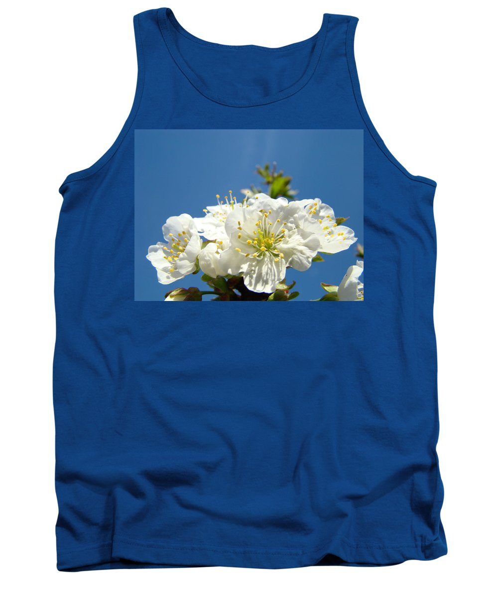 Blossom Tank Top featuring the photograph Cherry Blossoms Art White Spring Tree Blossom Baslee Troutman by Baslee Troutman