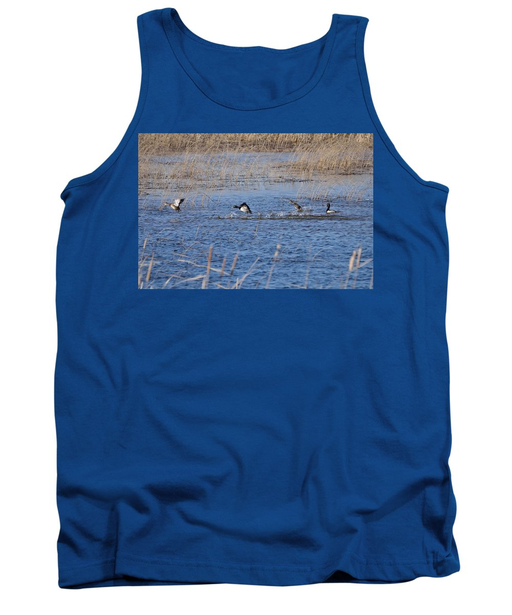 Nature Tank Top featuring the photograph Cleared For Takeoff-ring-necked Ducks by David Porteus