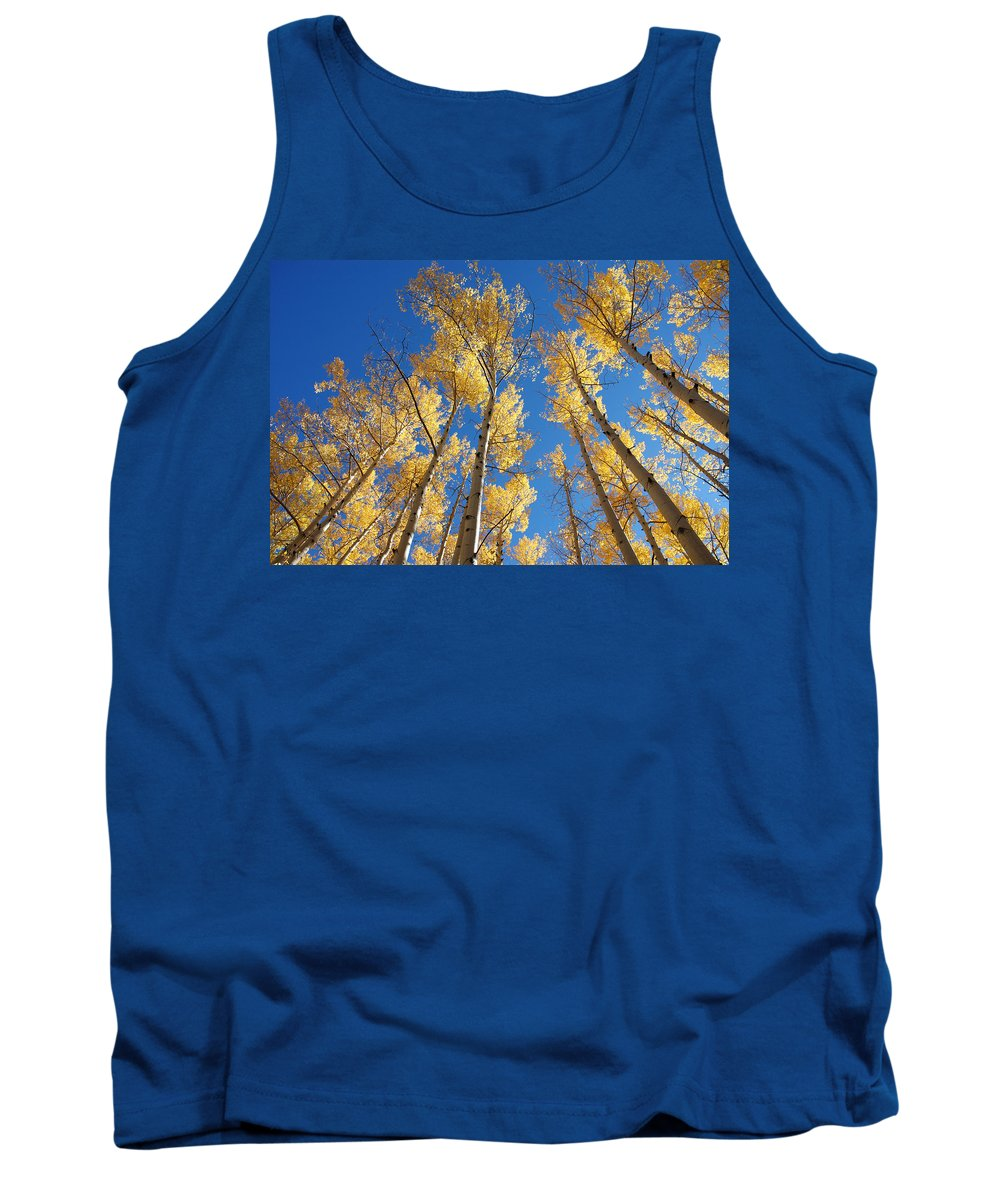 Aspen Tank Top featuring the photograph Colorado Aspen by Jerry McElroy