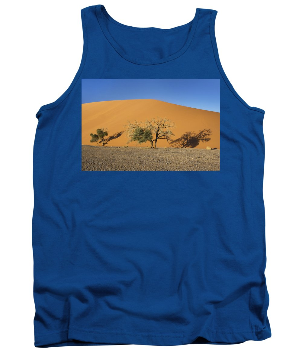 Dune 45 Tank Top featuring the photograph Dune 45 And Trees by Aivar Mikko