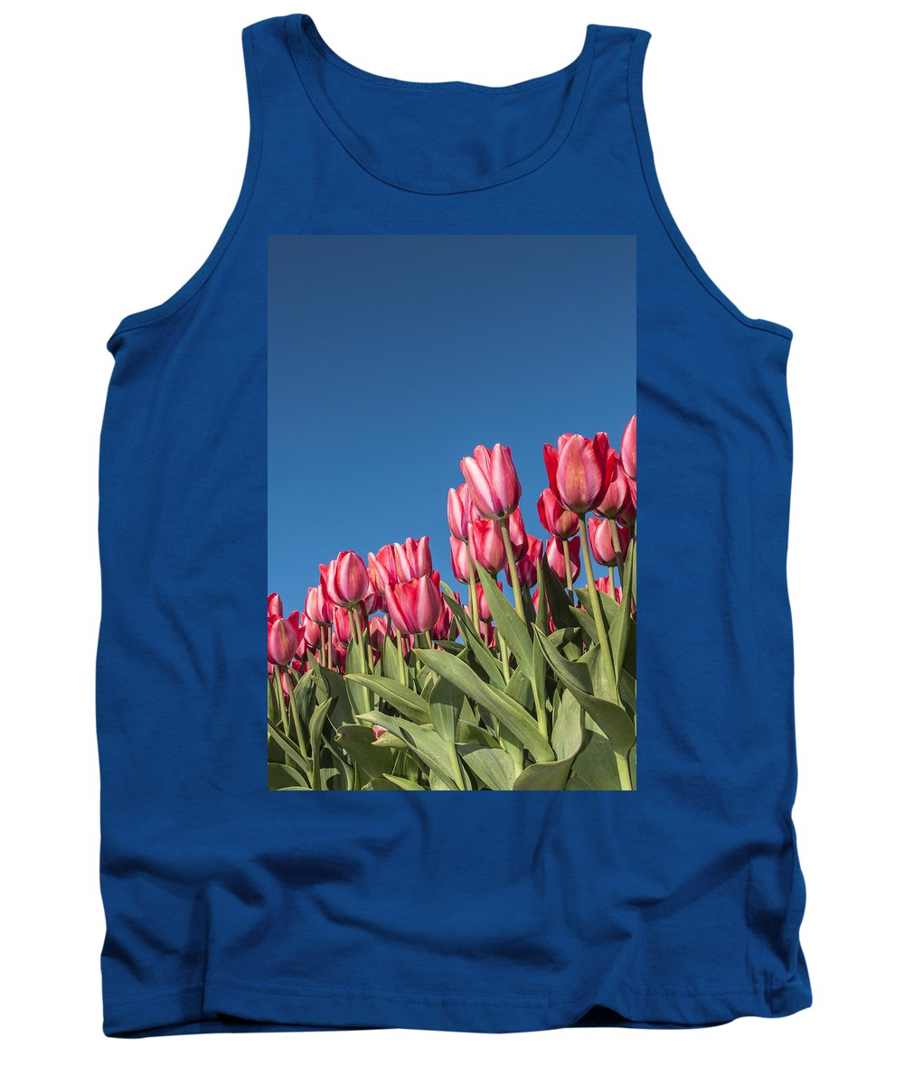 Tank Top featuring the photograph Dutch Tulips Second Shoot Of 2015 Part 8 by Alex Hiemstra