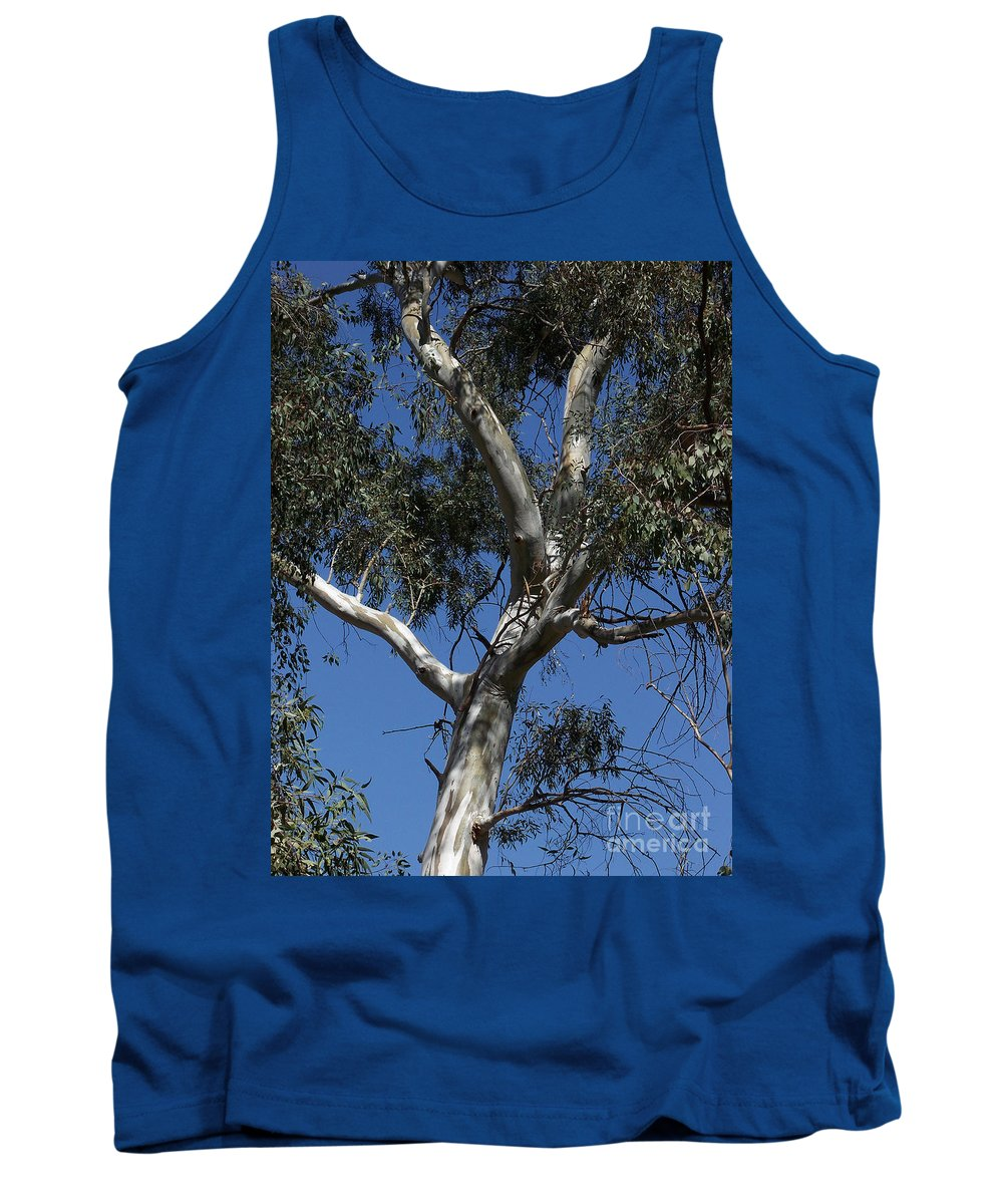Trees Tank Top featuring the photograph Eucalyptus by Kathy McClure