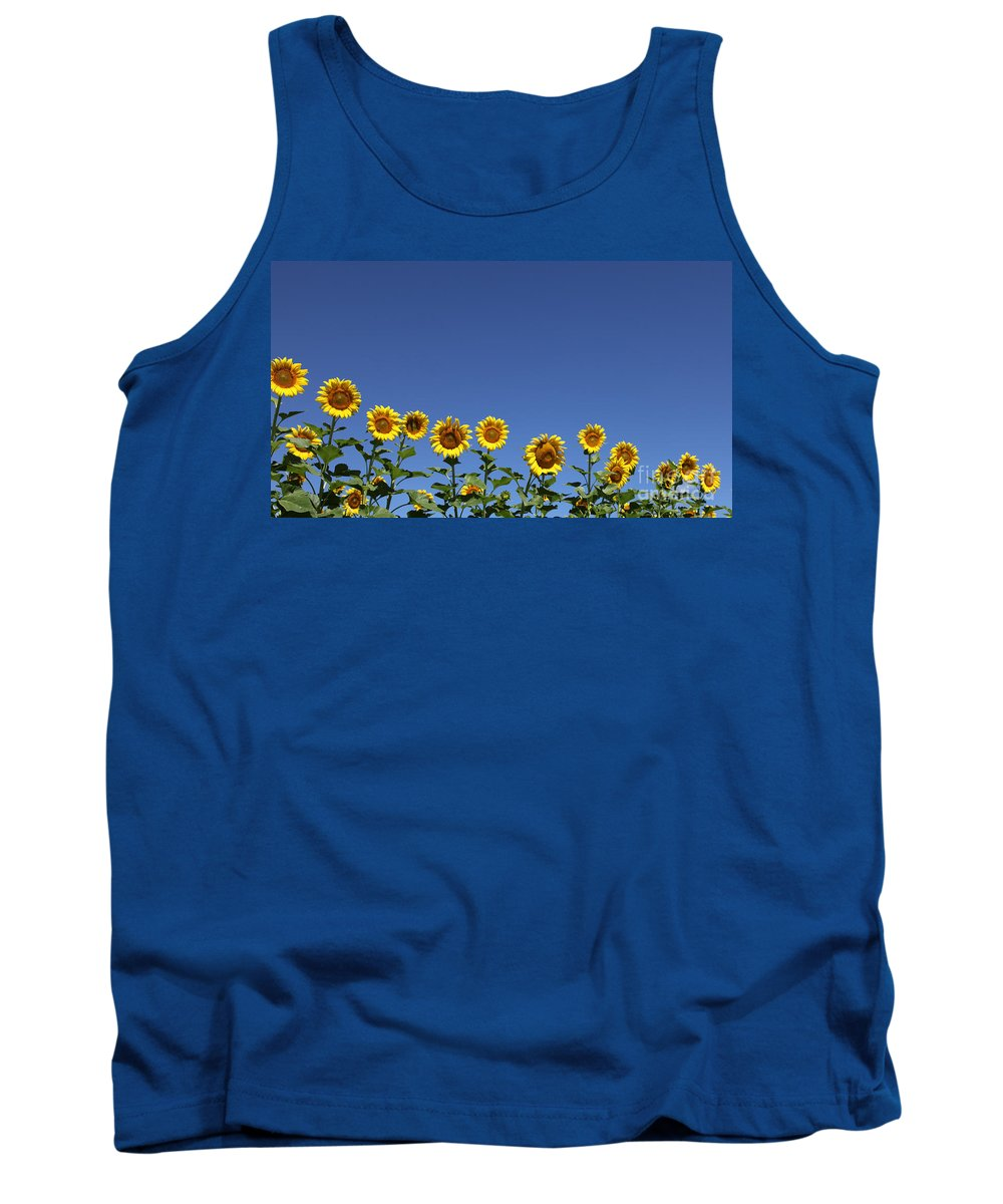 Sunflowers Tank Top featuring the photograph Family Time by Amanda Barcon