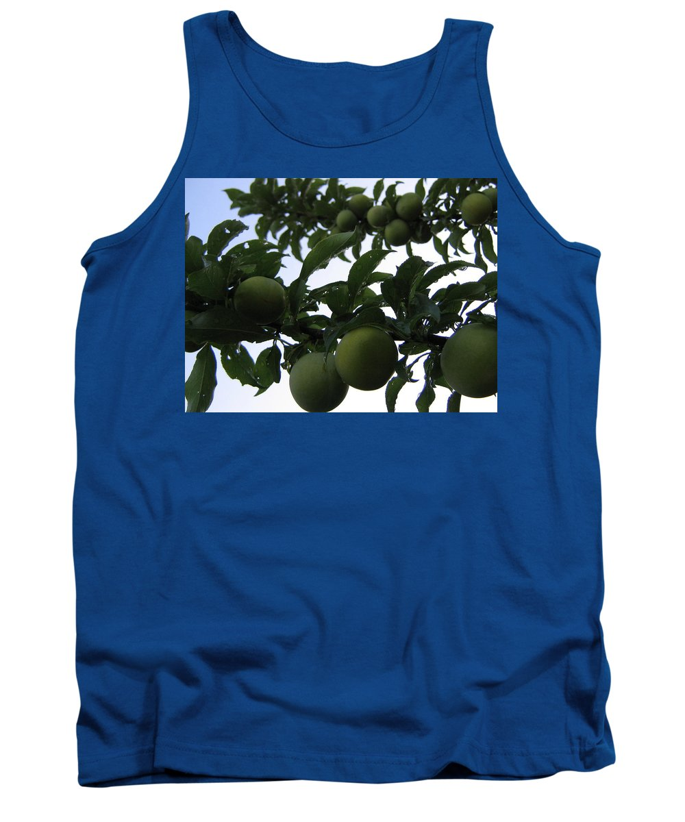 Plums Tank Top featuring the photograph Fruit And Sky_raindrops by Barbara Yearty