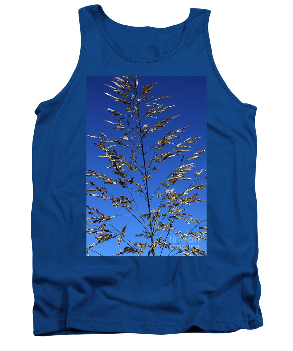 Nature Tank Top featuring the photograph Making A Sound by Amanda Barcon
