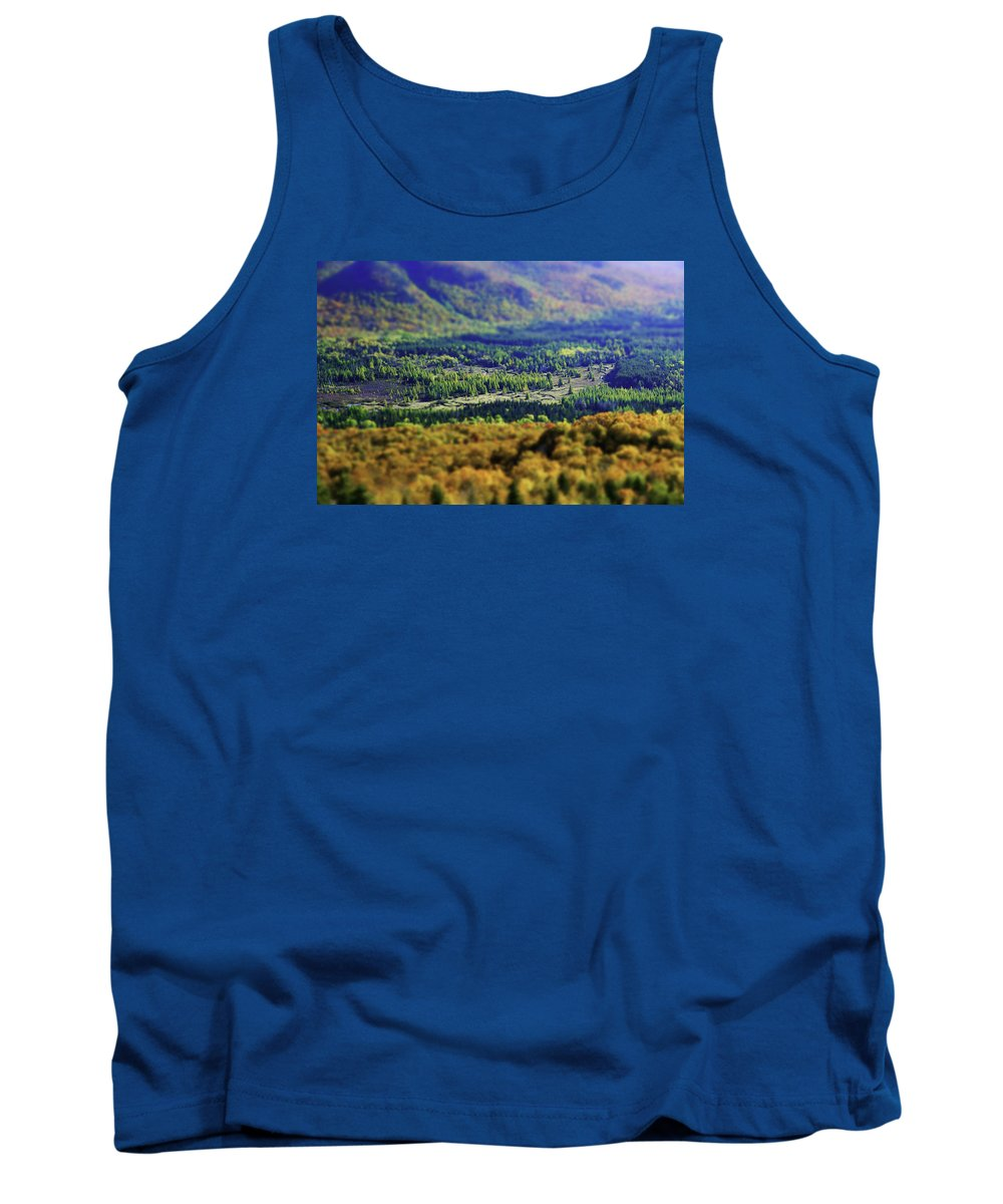 Adirondacks Tank Top featuring the photograph Mini Meadow by Brad Wenskoski