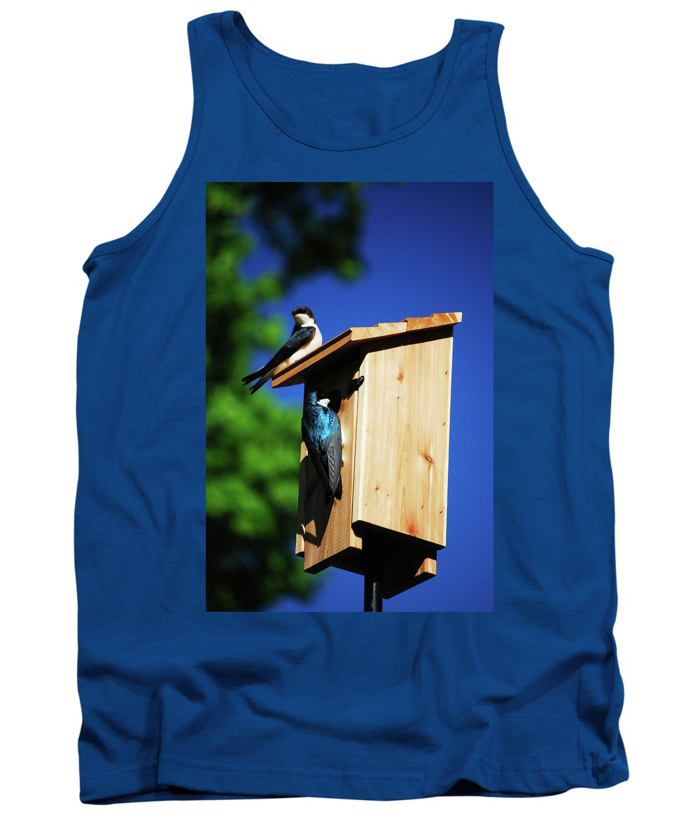 Tree Swallows Tank Top featuring the photograph New Home Inspection by Lori Tambakis