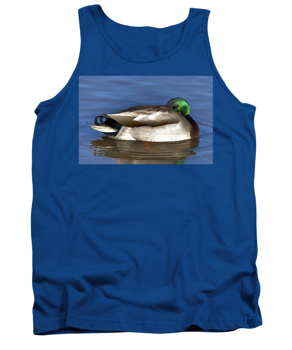 Duck Tank Top featuring the photograph Peek A Boo by Robert Pearson