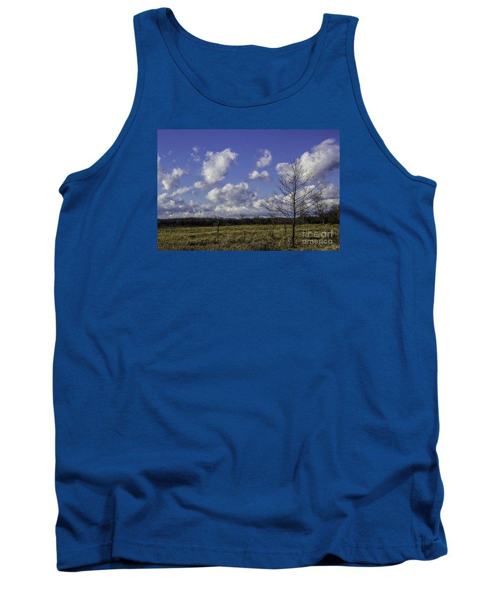 Sapling Tank Top featuring the photograph Sapling Of Blue by Doug Daniels