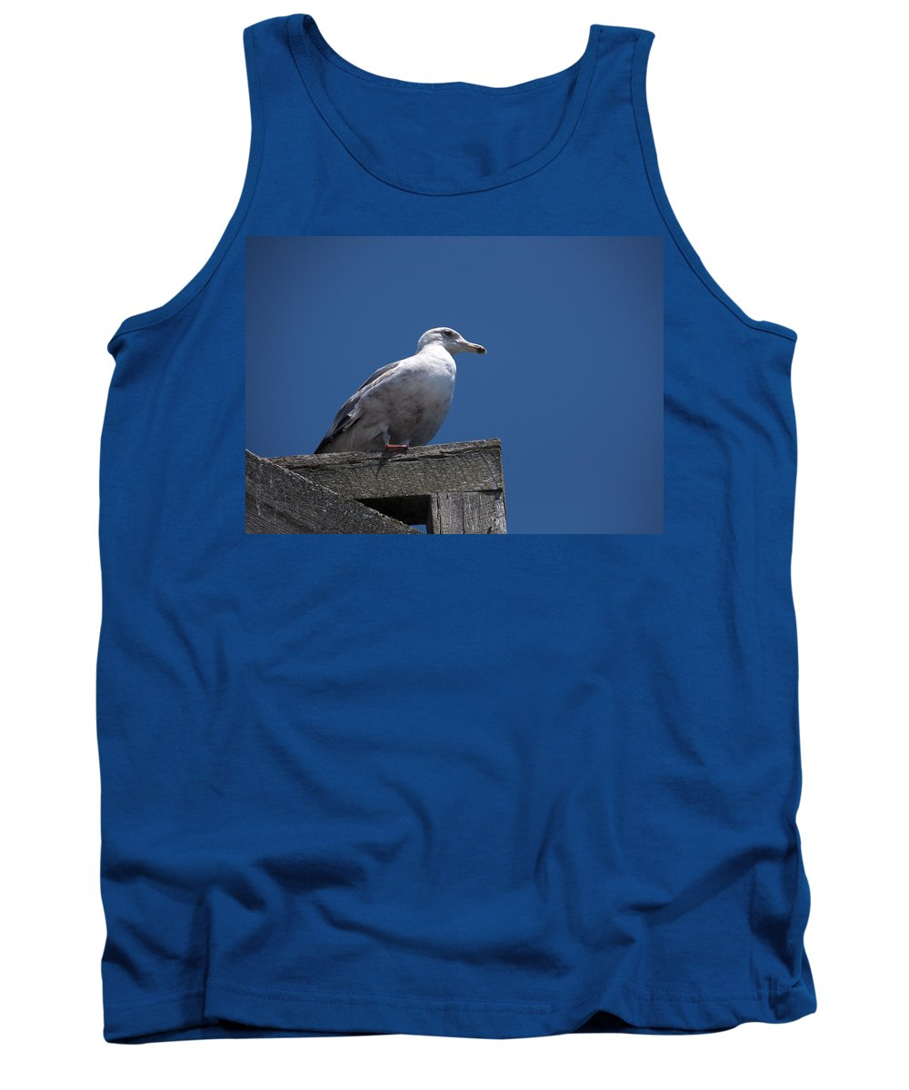 Dock Tank Top featuring the photograph Sitting By The Dock Of The Bay by Steven Natanson