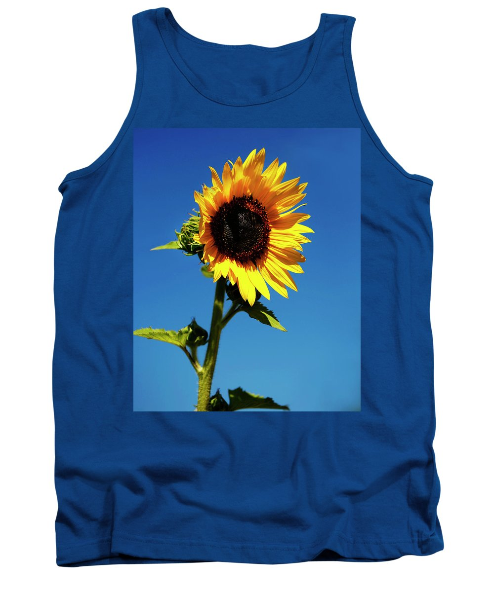 Sunflower Tank Top featuring the photograph Sunflower Stand Alone by Marilyn Hunt