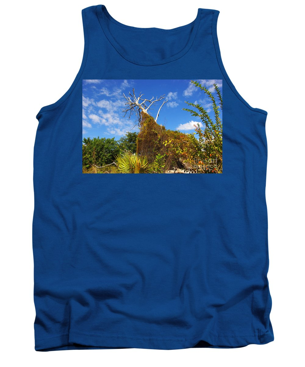 Tank Top featuring the photograph Tropical Plants In A Preserve In Florida by Zal Latzkovich