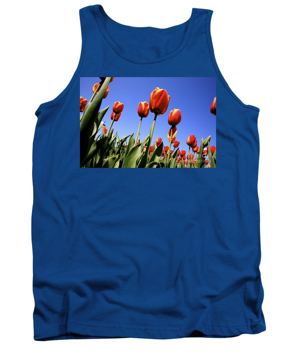 Tulips Tank Top featuring the photograph Tulips Time 3 by Robert Pearson
