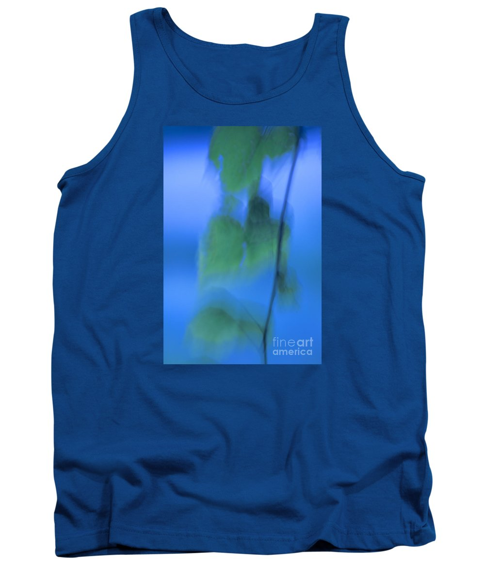 Abstract Tank Top featuring the photograph Twig And Leaf - D009634a by Daniel Dempster