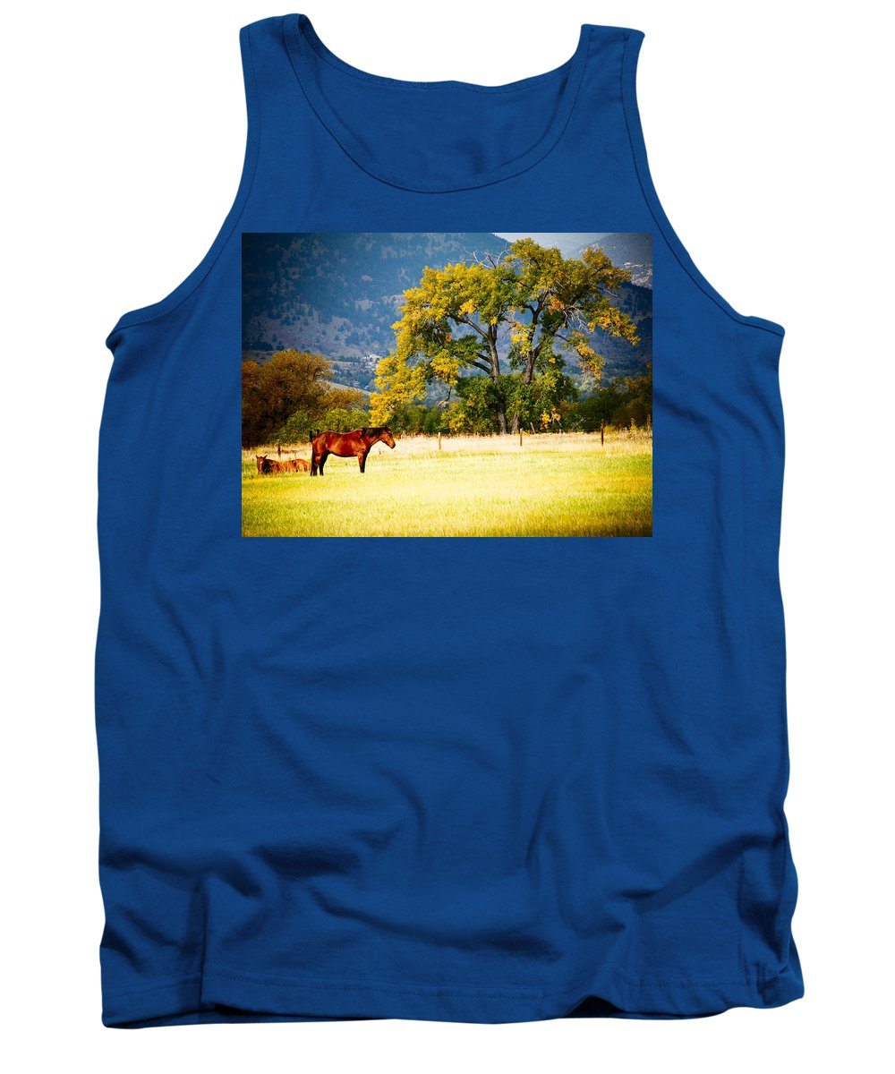 Animal Tank Top featuring the photograph Two Horses by Marilyn Hunt