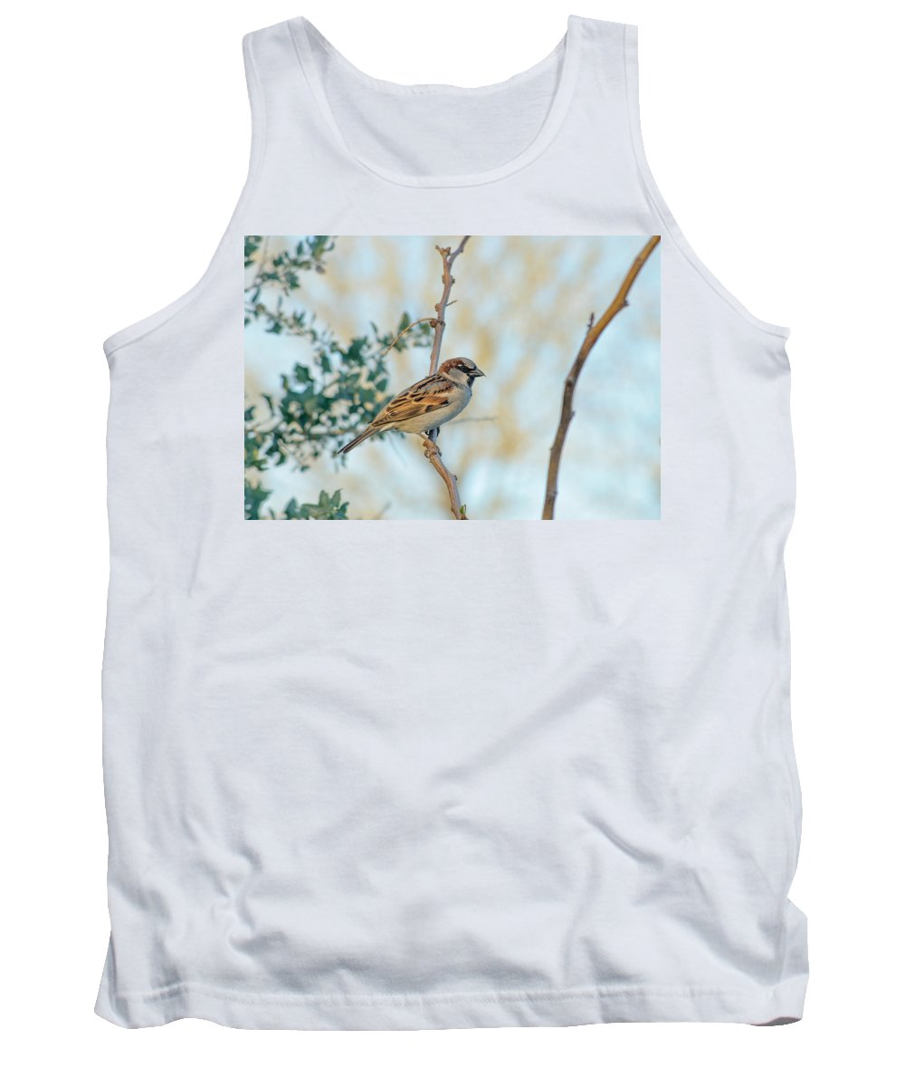 Chipping_sparrow Tank Top featuring the photograph Chipping Sparrow by Tam Ryan