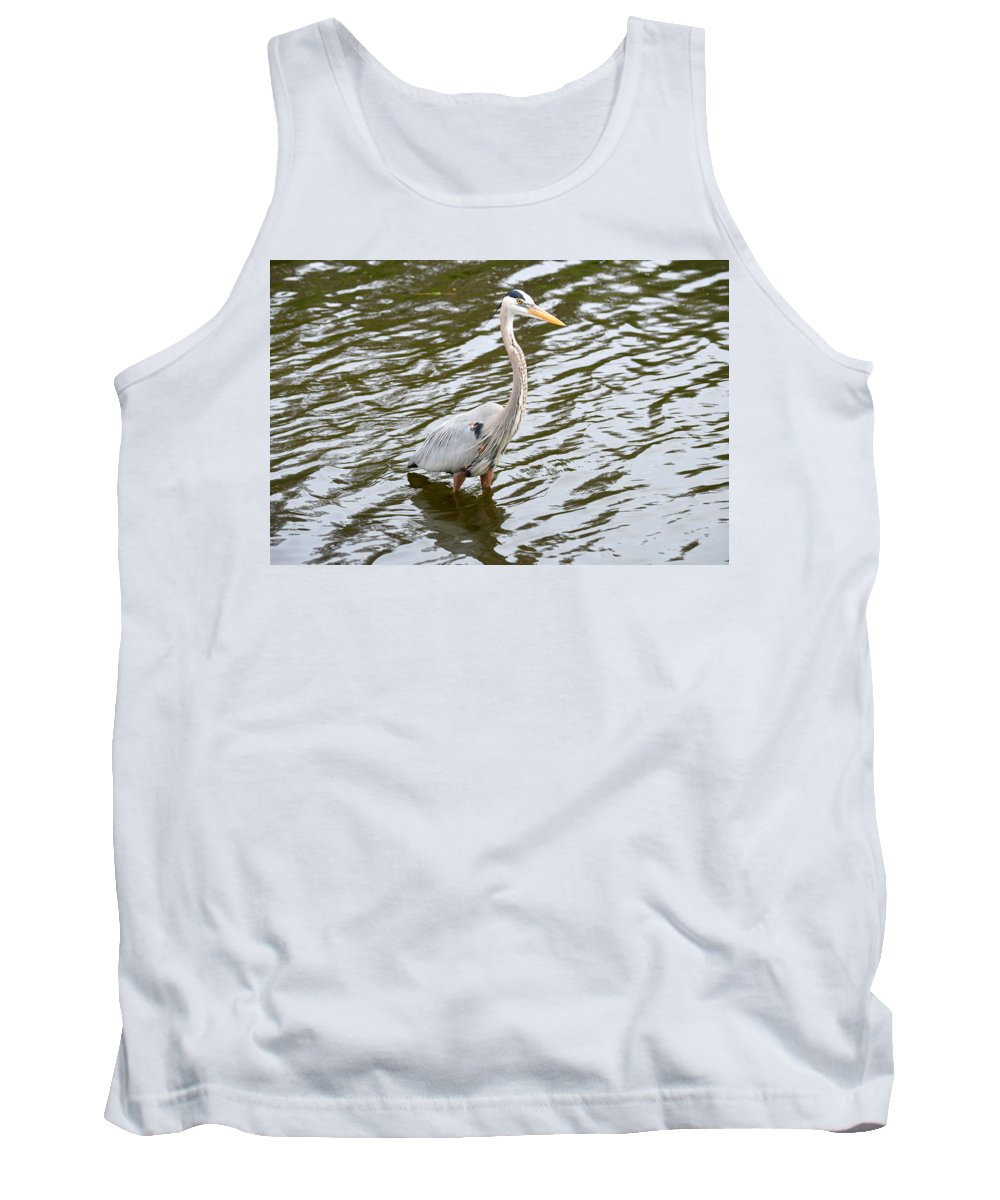 Blue Heron Tank Top featuring the photograph Cooling Off by Linda Kerkau