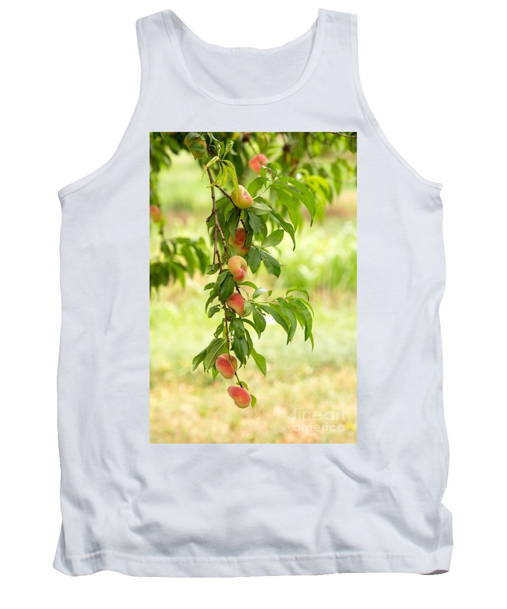 Peaches Tank Top featuring the photograph Donut Peaches by Iris Richardson