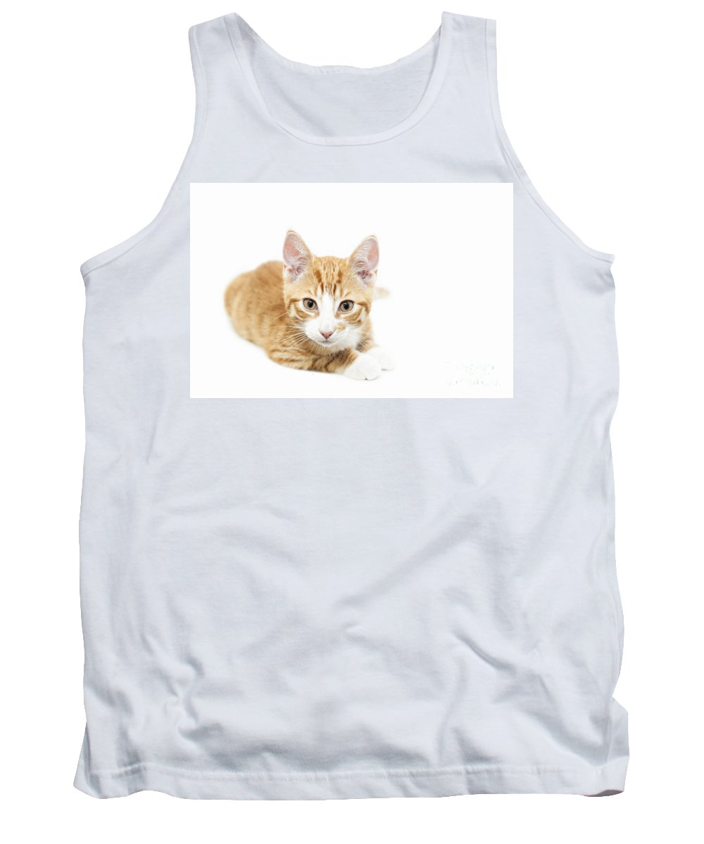 Kitten Tank Top featuring the photograph Ginger Kitten Staring by Sophie McAulay