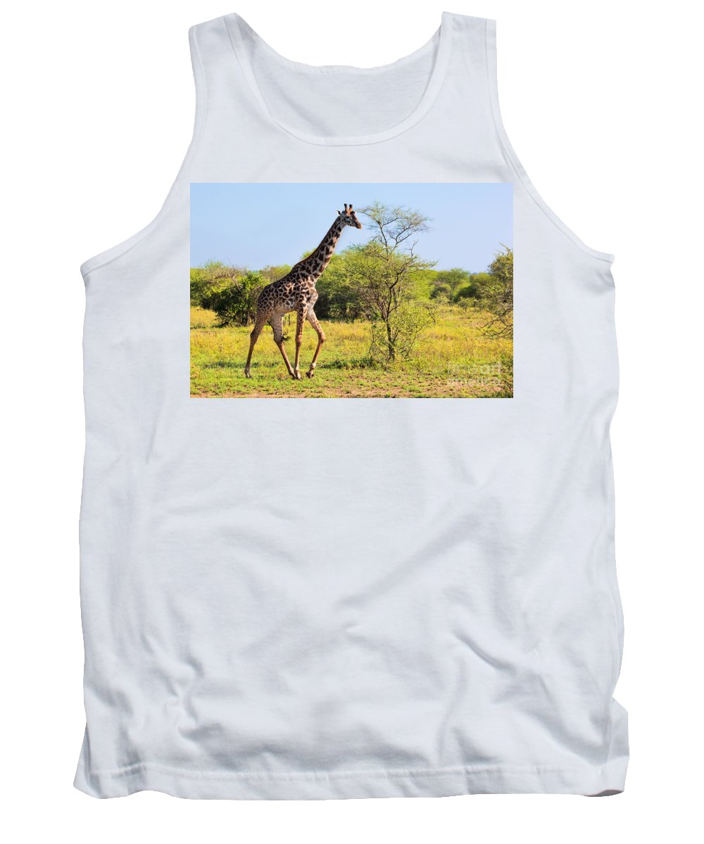 Giraffe Tank Top featuring the photograph Giraffe On Savanna. Safari In Serengeti by Michal Bednarek