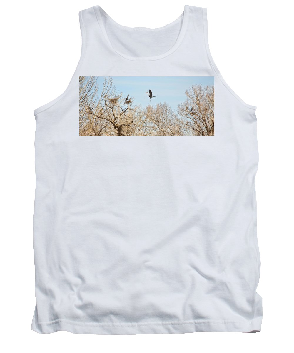 Great Blue Heron Tank Top featuring the photograph Great Blue Heron Nest Building 3 by James BO Insogna