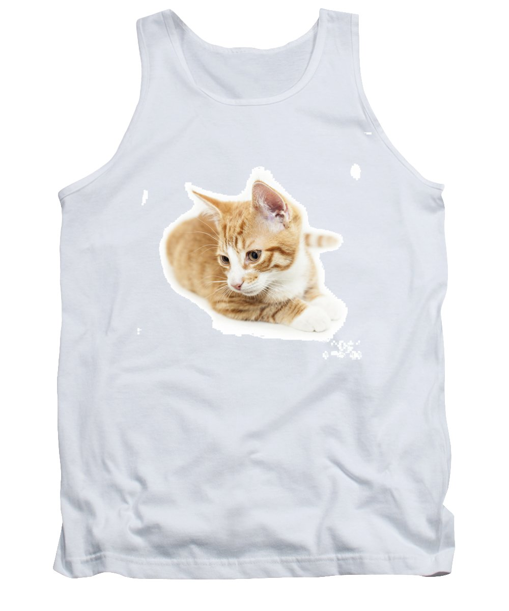 Kitten Tank Top featuring the photograph Isolated Ginger Kitten by Sophie McAulay