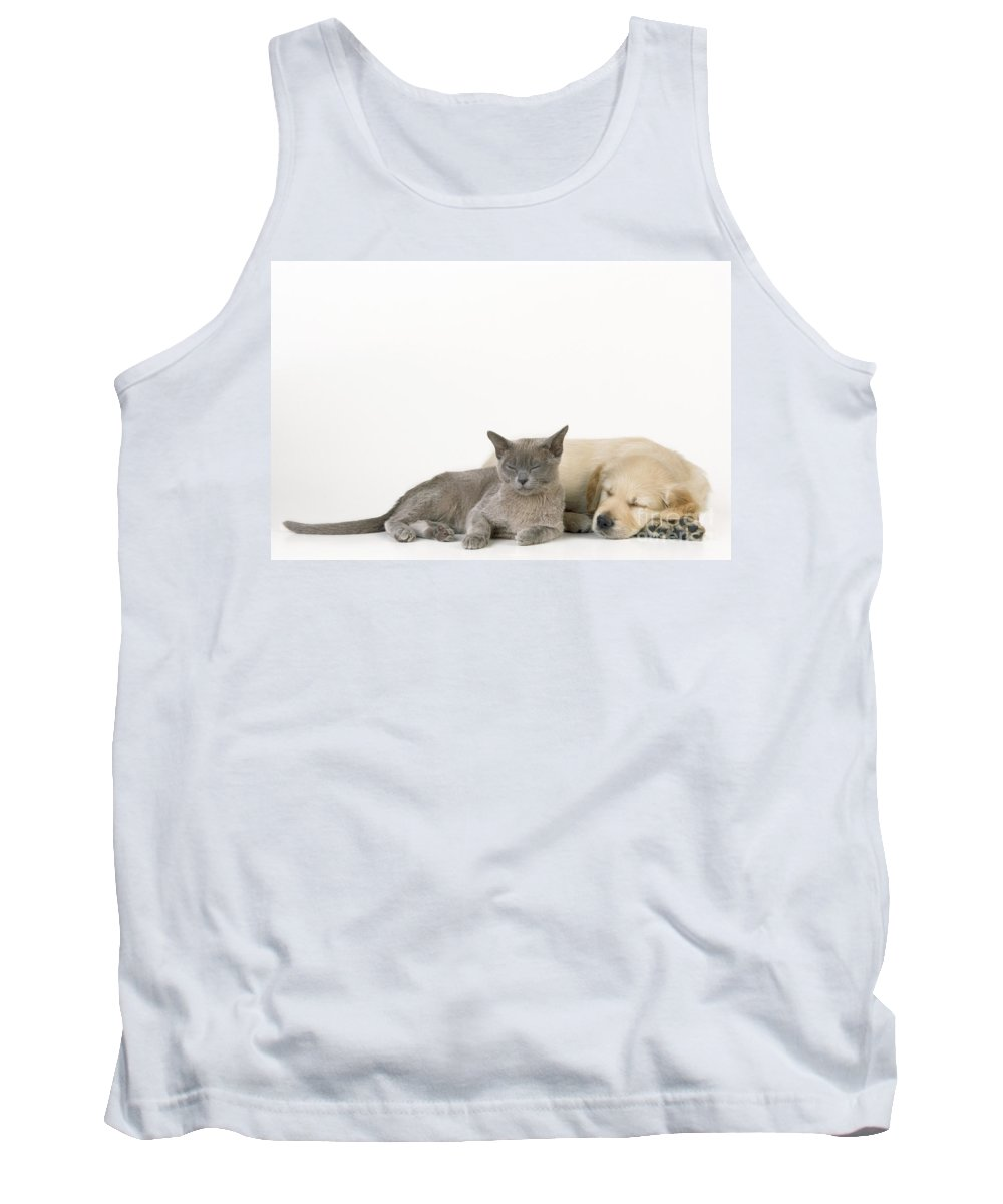 Cat Tank Top featuring the photograph Kitten And Puppy Lying Together by John Daniels