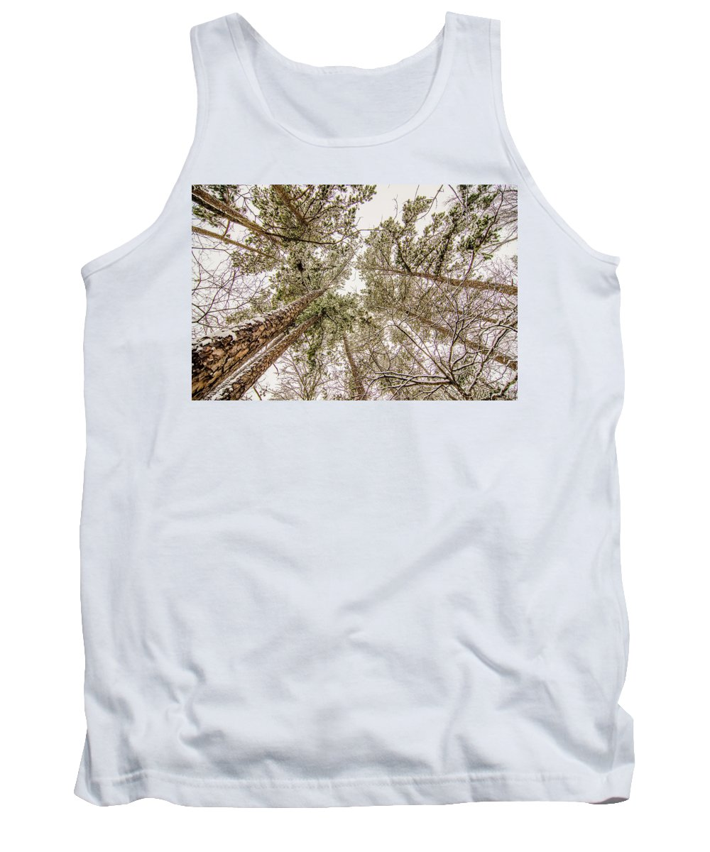 Looking Tank Top featuring the photograph Looking Up At Snow Covered Tree Tops by Alex Grichenko