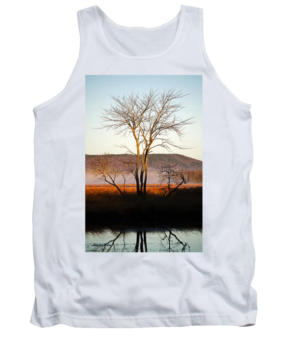 Tree Tank Top featuring the photograph Marsh Tree Reflections by Jeff Galbraith