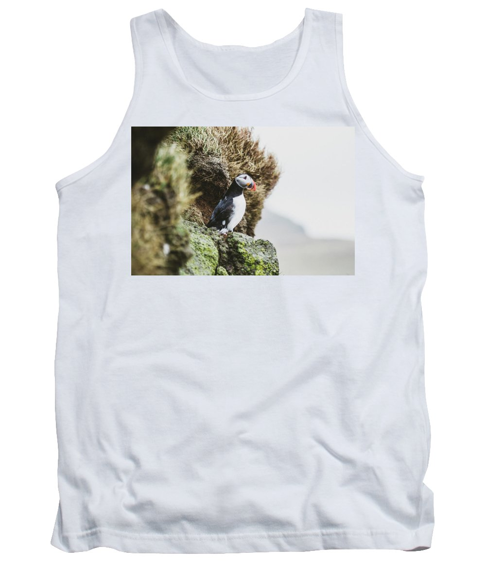 Horizontal Tank Top featuring the photograph Puffins On The Islet Of Mykines, Faroe by Sergio Villalba