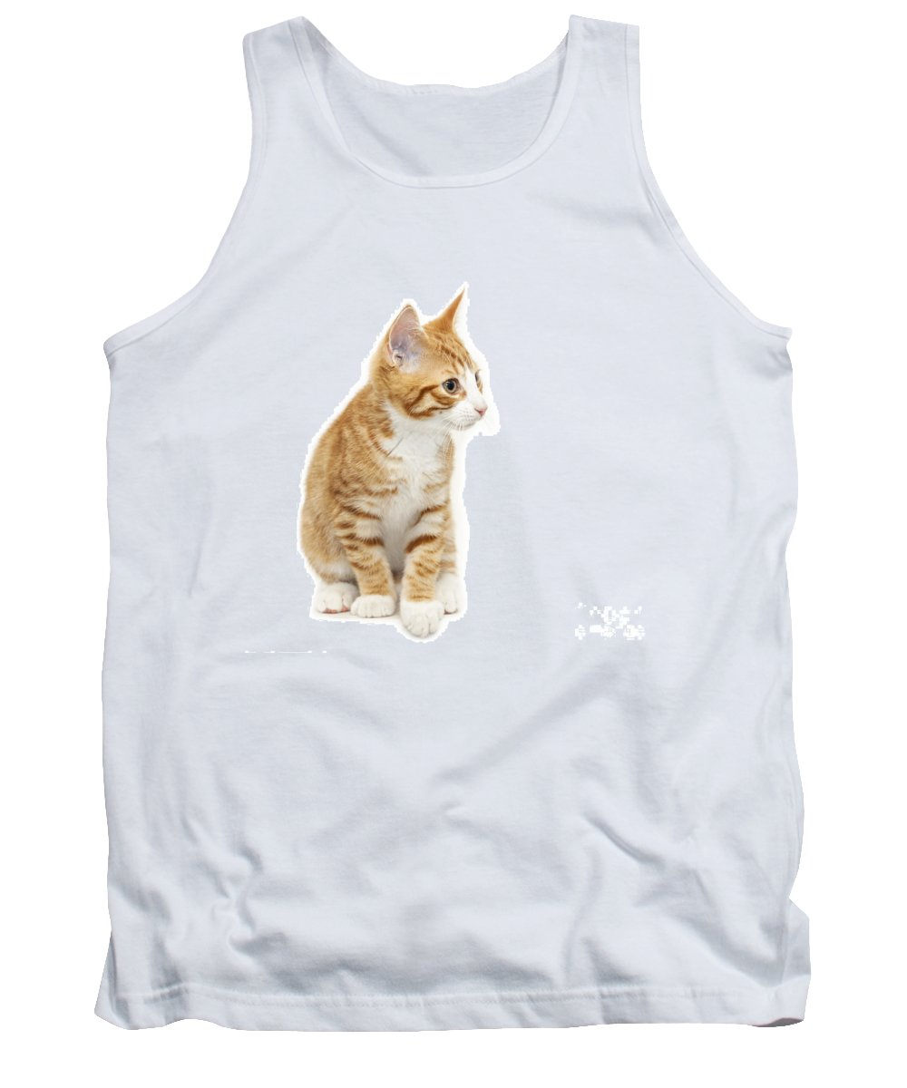 Kitten Tank Top featuring the photograph Stripy Ginger Kitten Sitting Down by Sophie McAulay