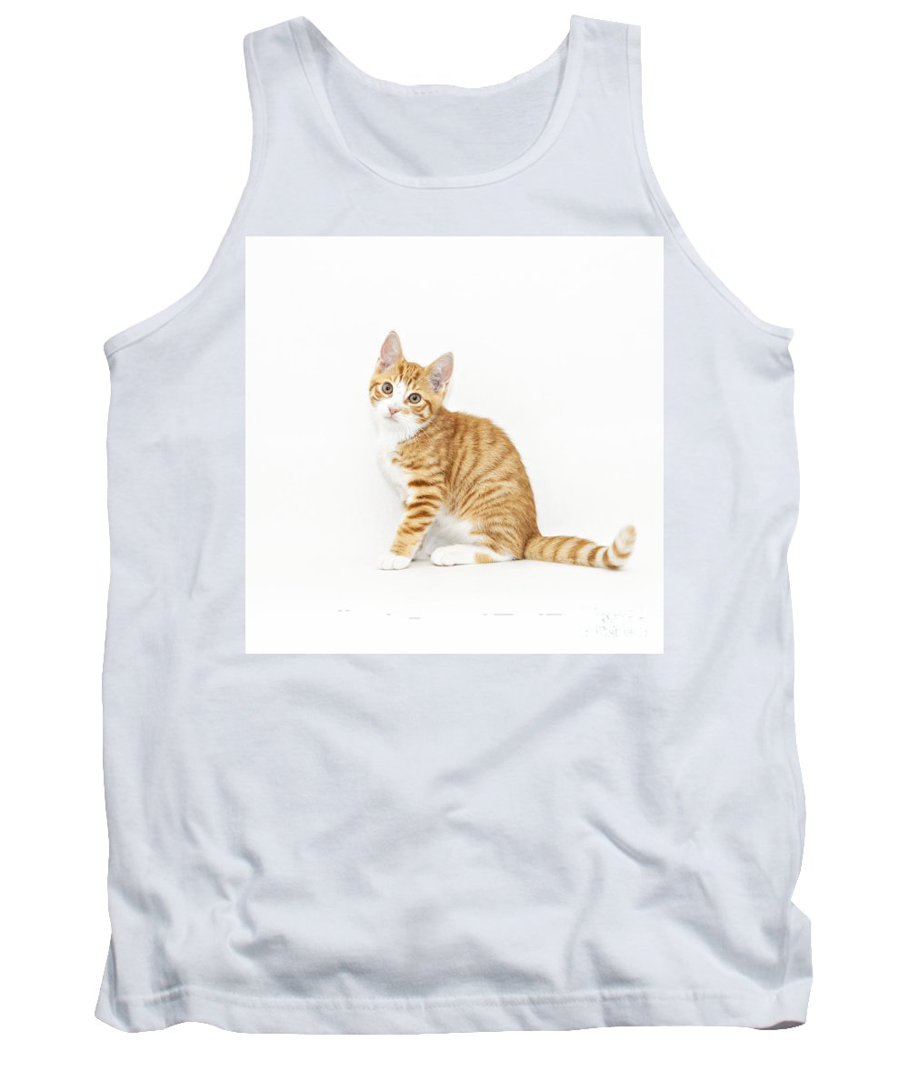 Kitten Tank Top featuring the photograph Stripy Red Kitten Sitting Down by Sophie McAulay