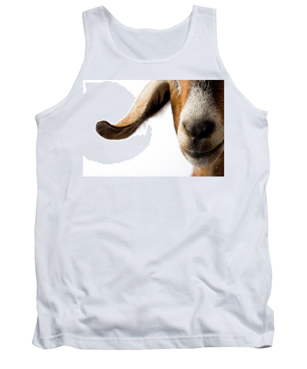 Agriculture Tank Top featuring the photograph Studio Portrait Of A Mixed-breed Goat by Michael Winokur