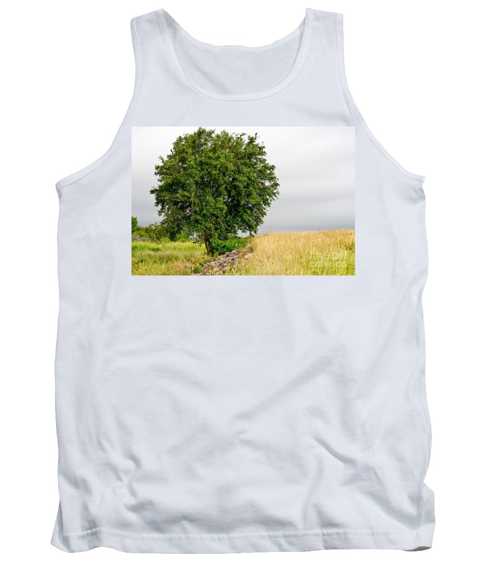 Summer Tank Top featuring the photograph Summer Tree by Gary Richards