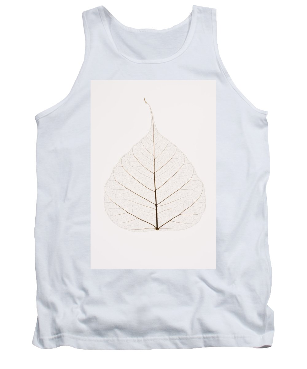 Copy-space Tank Top featuring the photograph Transparent Leaf by Kelly Redinger