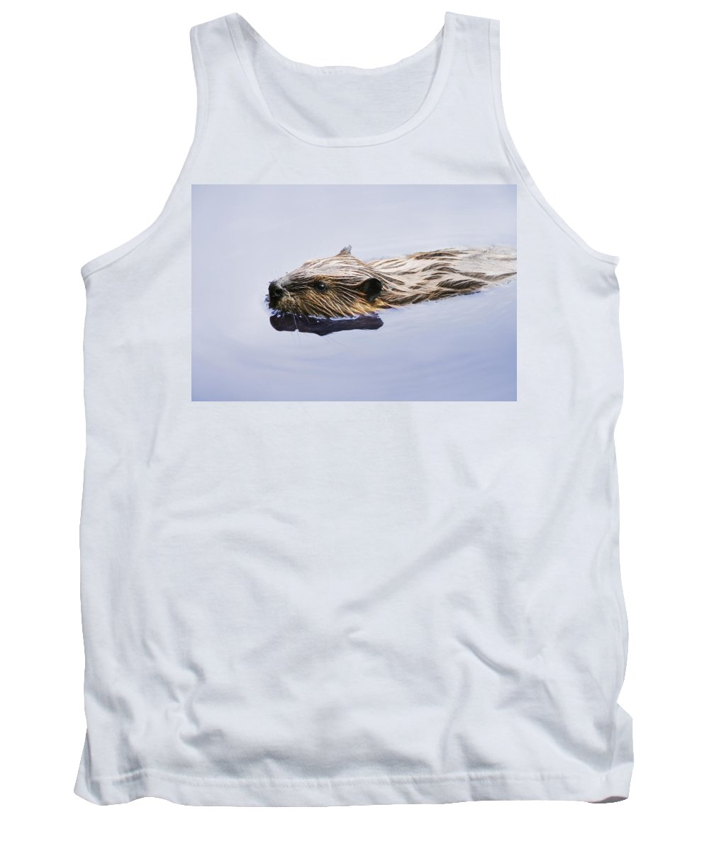 Animal Tank Top featuring the photograph View Of Beaver, Chaudiere-appalaches by Yves Marcoux