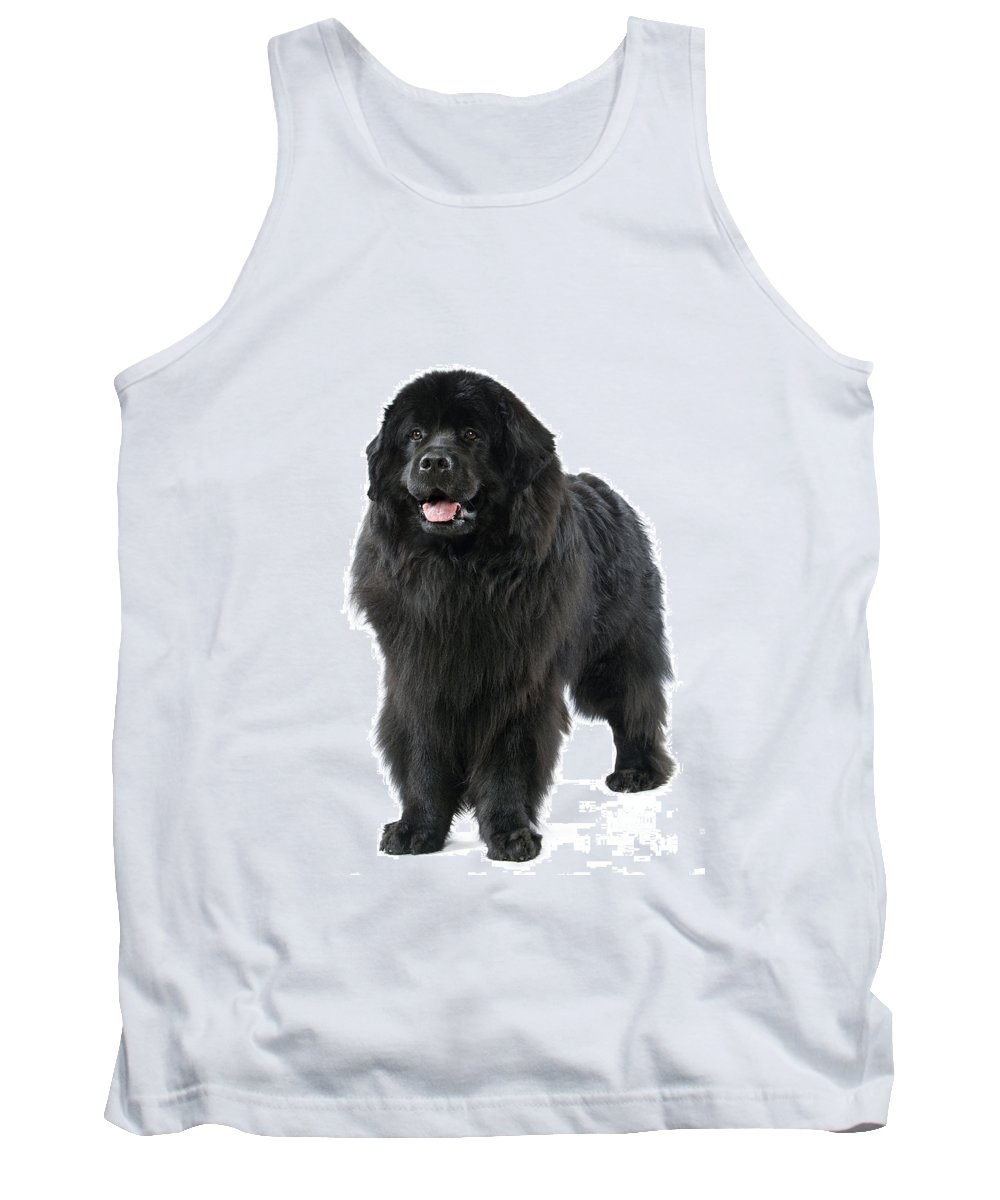 Newfoundland Tank Top featuring the photograph Newfoundland Dog by Jean-Michel Labat