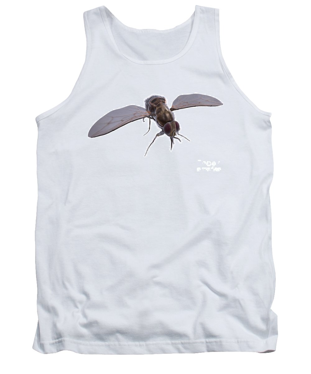 Glossina Palpalis Tank Top featuring the photograph Tsetse Fly by Science Picture Co