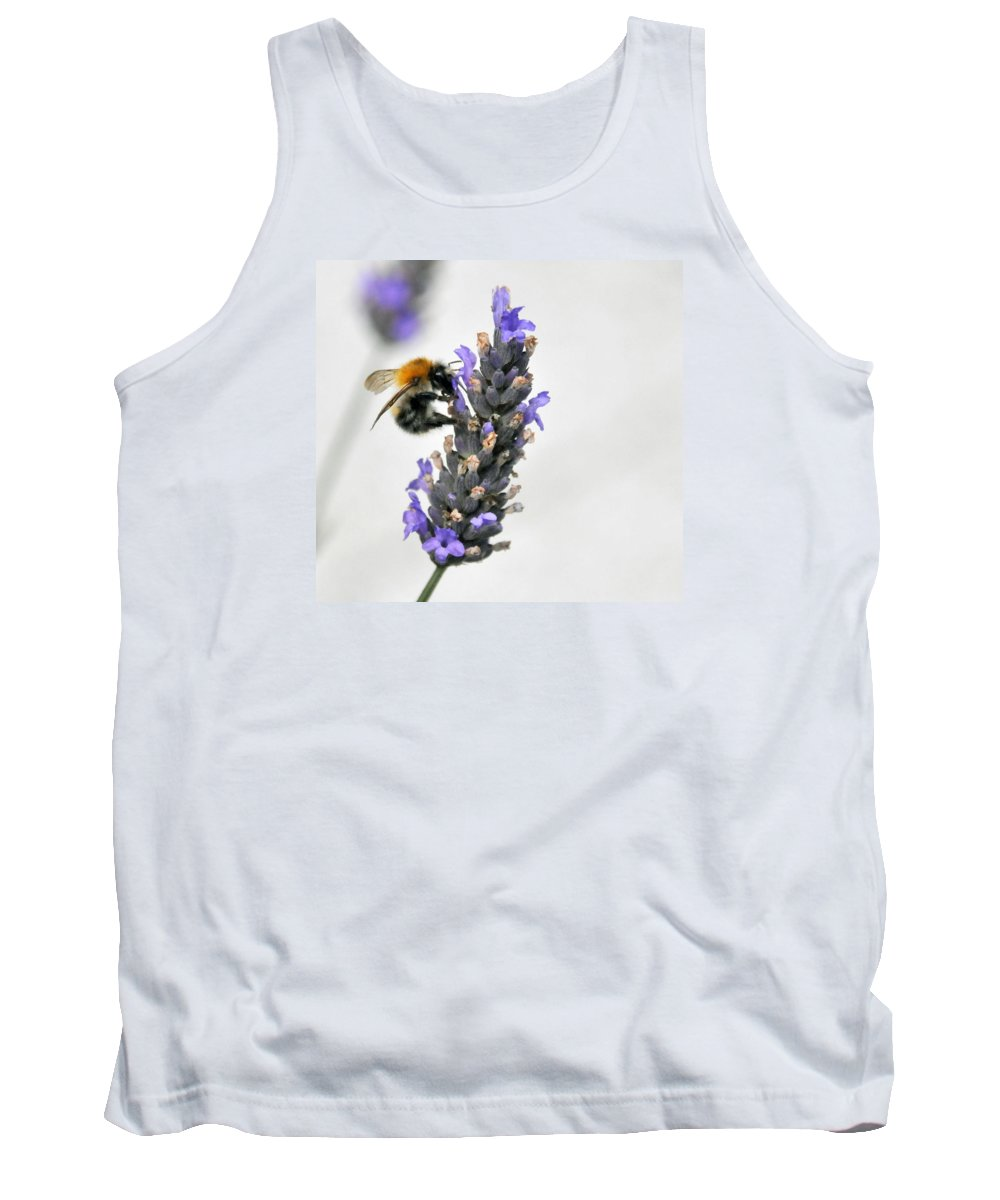 Bees Tank Top featuring the photograph Busy Bees by Dave Byrne