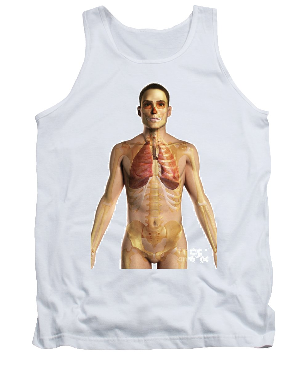 Transparent Tank Top featuring the photograph The Respiratory System by Science Picture Co