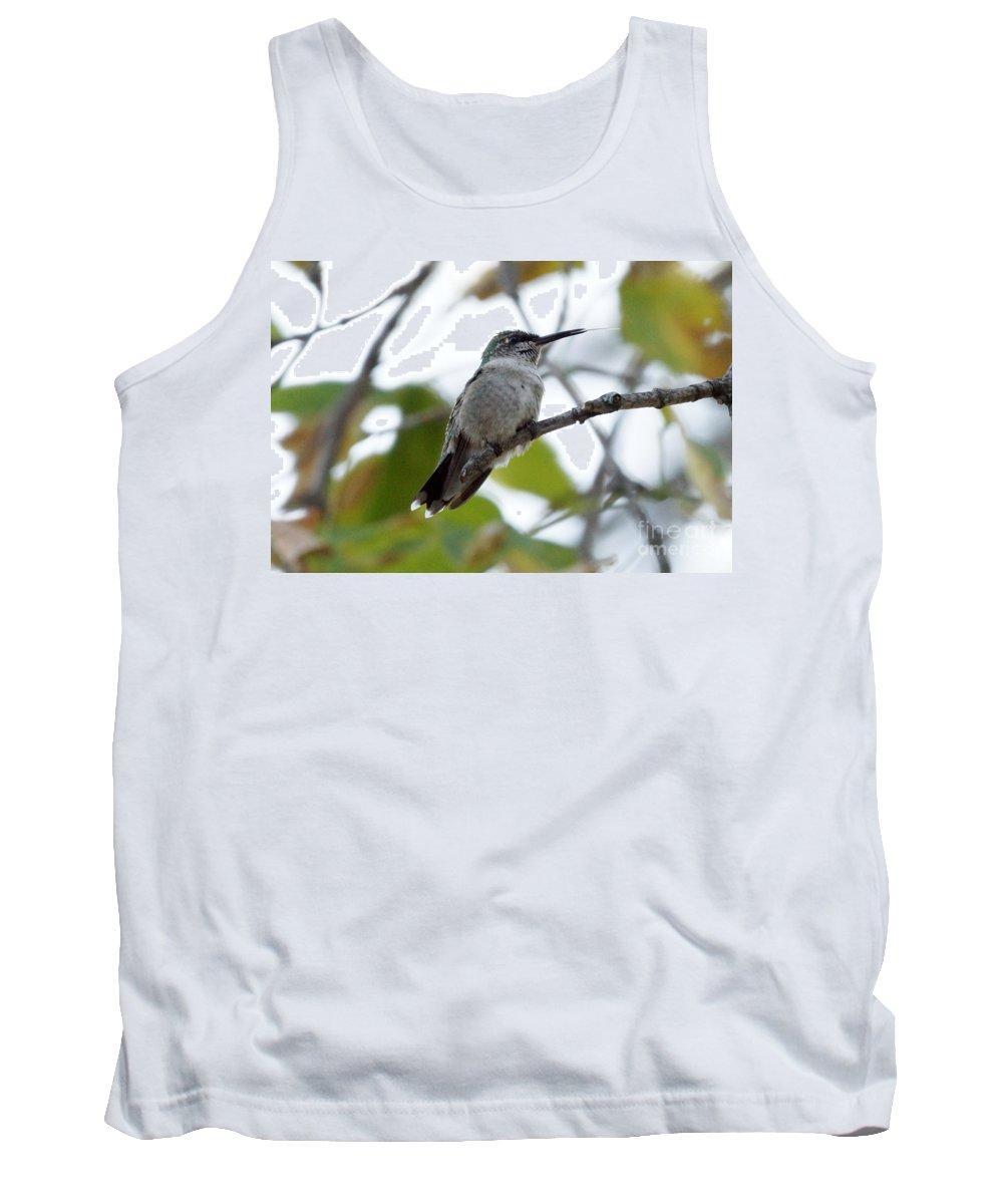 Birds Tank Top featuring the photograph Hummingbird by Lori Tordsen