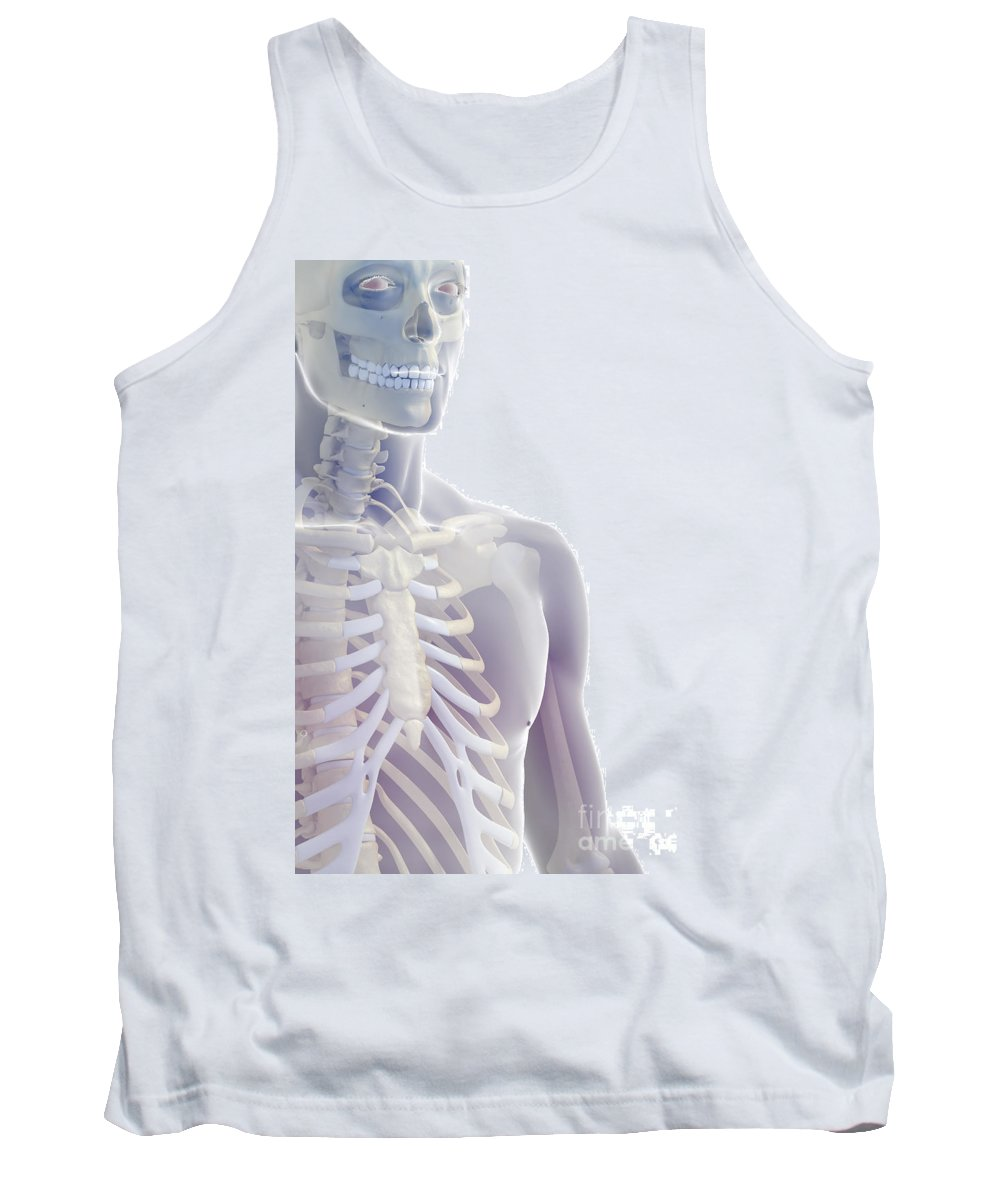 Rib Cage Tank Top featuring the photograph Bones Of The Upper Body by Science Picture Co