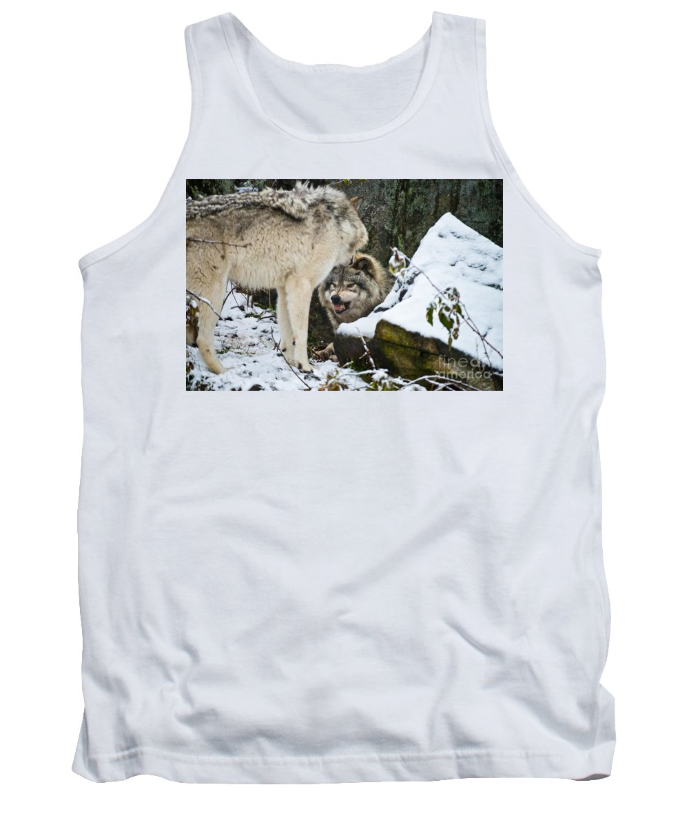 Timber Wolf Photography Tank Top featuring the photograph Timber Wolves by Michael Cummings