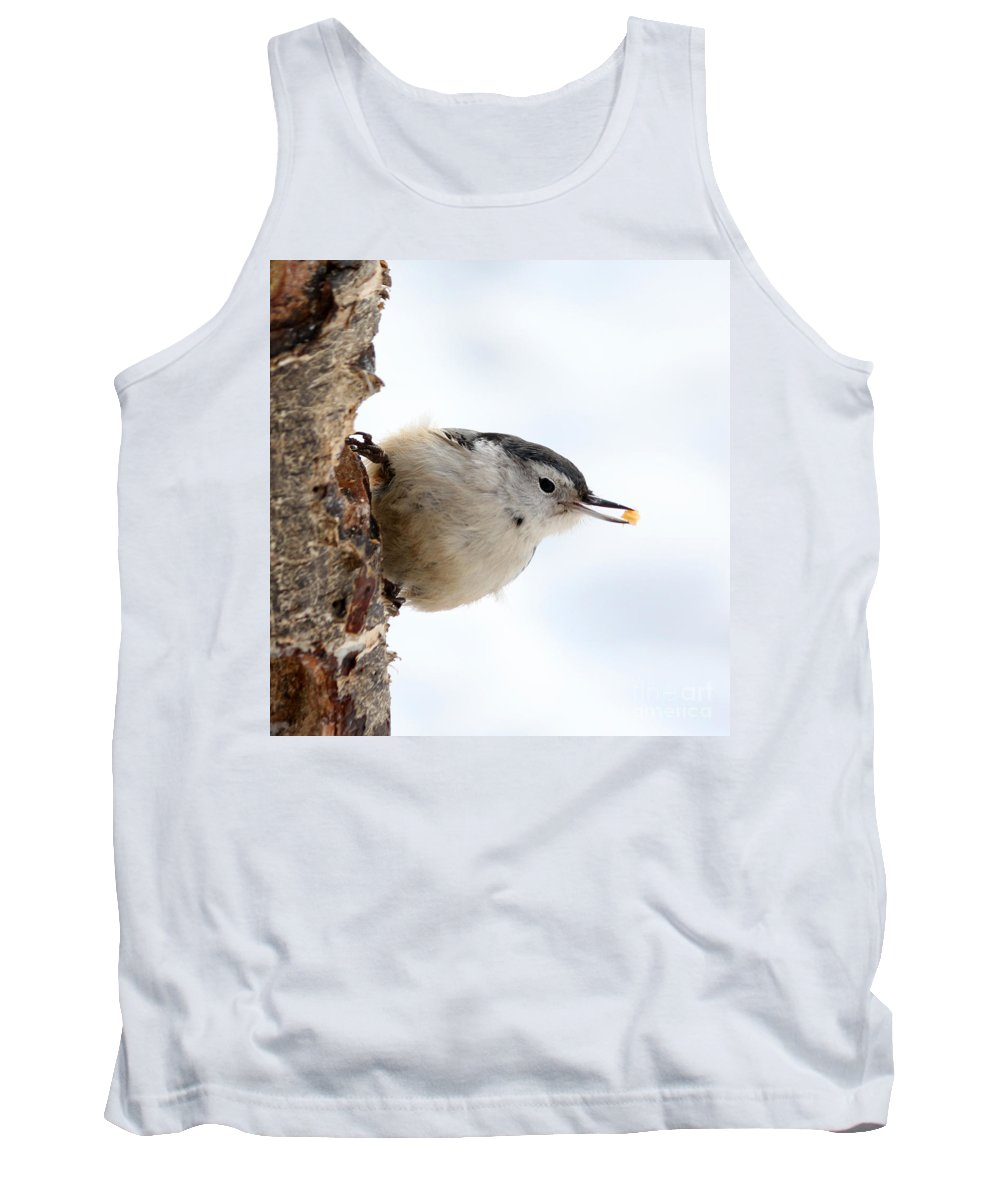 Trees Tank Top featuring the photograph White-breasted Nuthatch by Lori Tordsen