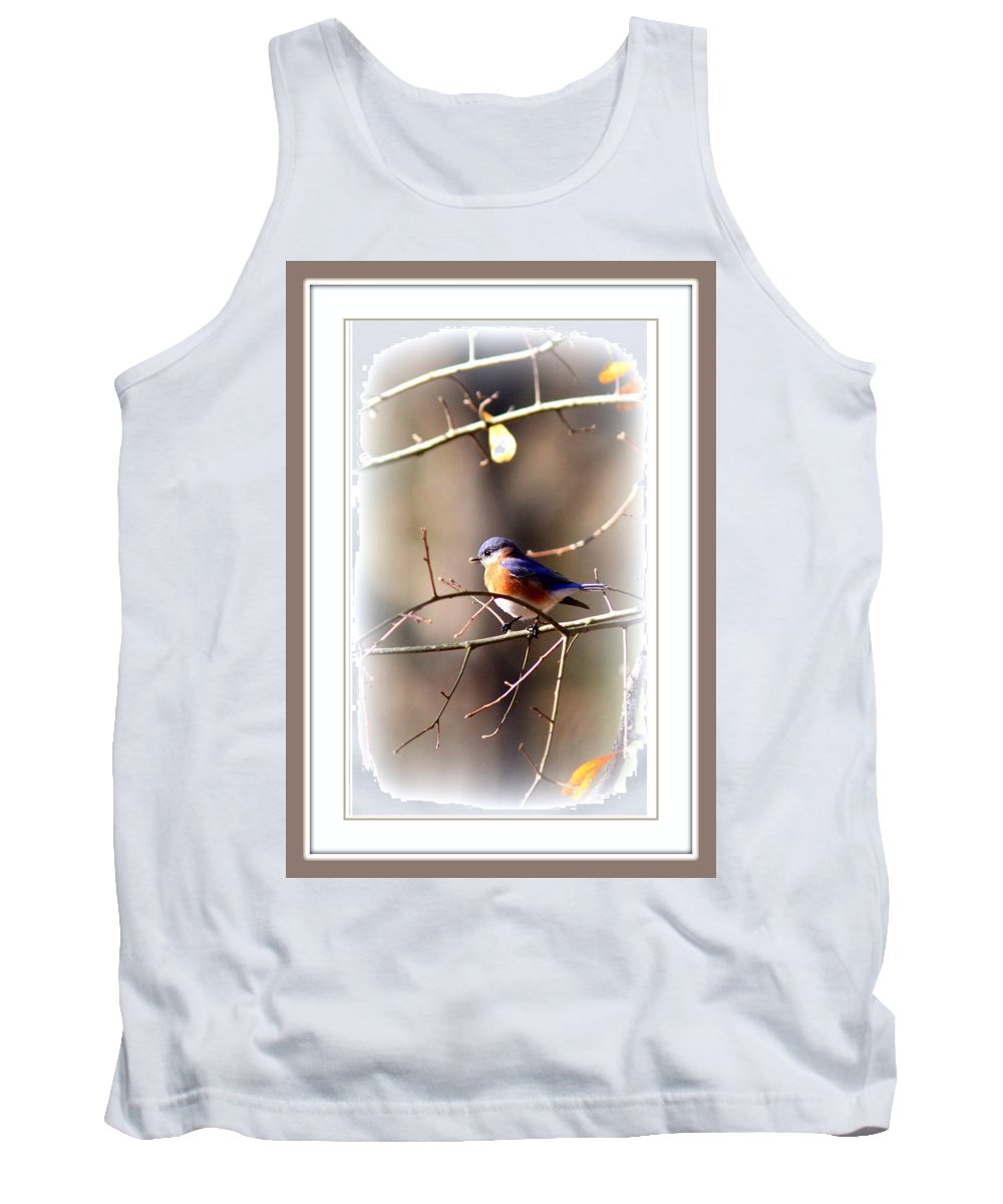 5325-010 Tank Top featuring the photograph 5325-010- Eastern Bluebird by Travis Truelove