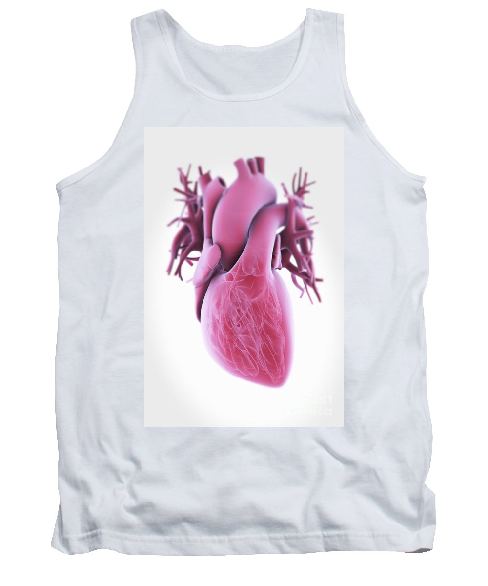 Valves Tank Top featuring the photograph Human Heart by Science Picture Co
