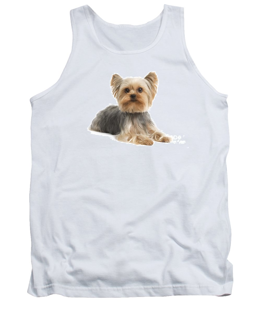 Yorkshire Terrier Tank Top featuring the photograph Yorkshire Terrier Dog by Jean-Michel Labat