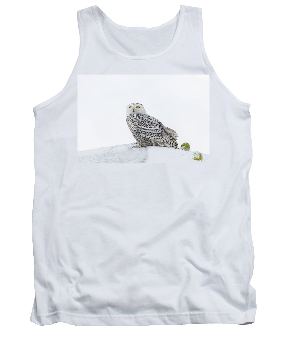 Snowy Owl Tank Top featuring the photograph A Game Of Fetch by Scott Thorp