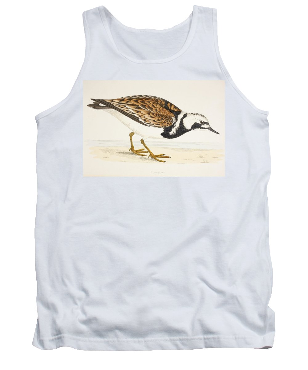 Arenaria Tank Top featuring the photograph A Turnstone. Arenaria Interpres. From A by Ken Welsh